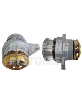 Pompa Acqua 10765