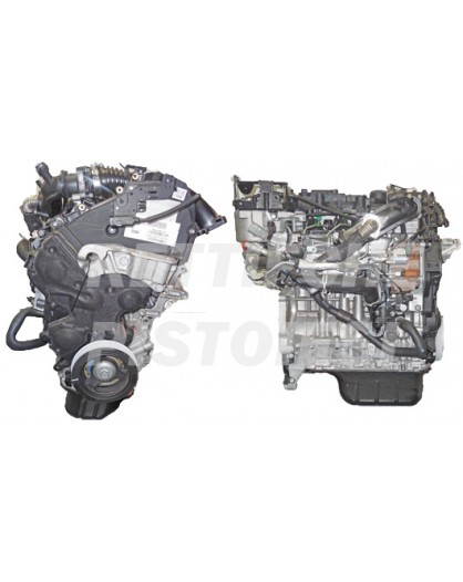 Ford 1600 HDI 8v Motore Nuovo completo T1DA