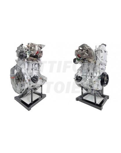 Smart 700 Benzina Motore Revisionato con turbina nuova 15